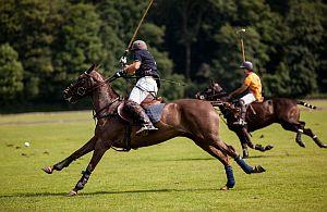 Unsere Incentive Agentur führt Sie auch zu den beliebtesten Reitsport Veranstaltungen. Polo, Derby oder Dressur. Unsere Sportincentive Reisen sind immer spannend.