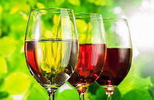 Genießen Sie auf Ihrer Weinreise mit unserer Incentive Agentur die besten Weine.